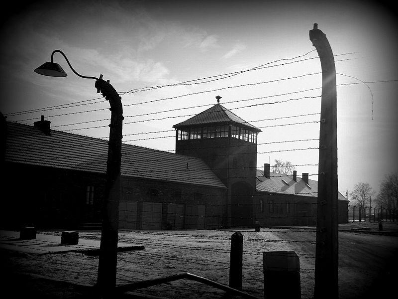 KL_Auschwitz-Birkenau_(12676146163) (1)
